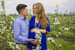 Family on green field. Beautiful caucasian pregnant couple in blooming garden Stock Image