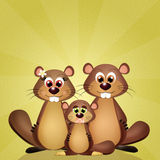 Family of groundhogs Royalty Free Stock Photo