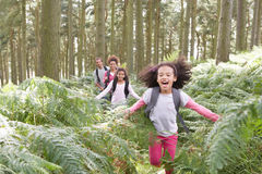 Free Family Group Hiking In Woods Together Stock Photography - 34177422