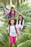 Family Group Hiking In Woods Together Royalty Free Stock Photos