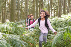 Family Group Hiking In Woods Together Royalty Free Stock Image