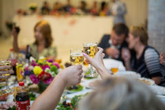 Family and guests toasting glasses with champagne at wedding rec Royalty Free Stock Photo