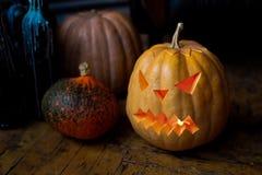 Family of Halloween pumpkin head jack lantern. Stock Images