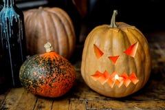 Family of Halloween pumpkin head jack lantern. Royalty Free Stock Photography