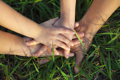 Family hand stack together. On the grass Royalty Free Stock Photos