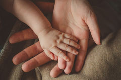 Family hands on team Royalty Free Stock Images