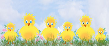 Family of Happy Yellow chicks Illustration Royalty Free Stock Photography