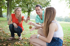 Family harvesting chestnuts Stock Images