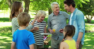 Family having a barbecue stock footage