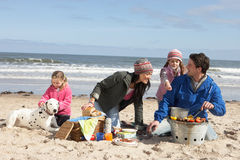 Family Having Barbeque On Winter Beach stock photos