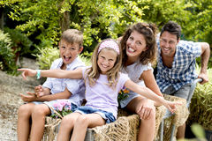 Family having fun with a barrow in a greenhouse Stock Photos
