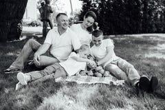 Family having fun at a picnic Stock Photos