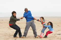 Family Having Fun On Winter Beach Royalty Free Stock Photo