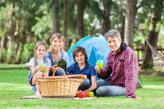 Family Having Good Time In Park Stock Photo