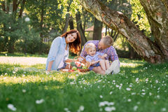 Family having a great time in the park. Stock Photography