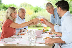 Family having lunch together making toast Royalty Free Stock Photo
