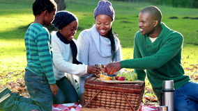 Family having a picnic in countryside stock footage