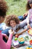 Family Having Picnic In Countryside Stock Photography
