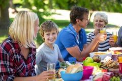 Family having a picnic Stock Image