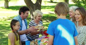 Family having picnic in the park stock video footage
