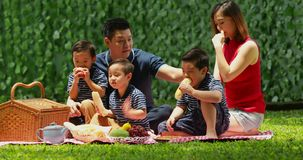 Family having picnic at the park stock footage