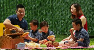 Family having picnic and playing guitar stock footage
