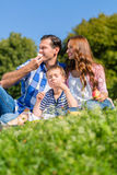 Family having picnic sitting in grass on meadow Stock Image