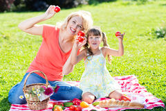 Family having picnic in summer park Royalty Free Stock Photography
