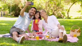 Family having picnic and taking selfie at park stock footage
