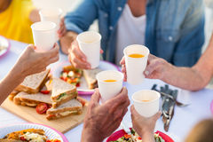 Family having a picnic and toasting Stock Photography