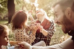 Family having picnic together in park royalty free stock images