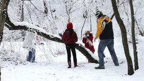 Family Having Snowball Fight stock video footage