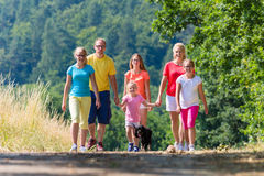 Family having walk on path in the woods Stock Image
