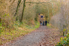 Family having a winter walk in the forest royalty free stock images