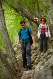 Family of hikers walking on a mountain trail Royalty Free Stock Images