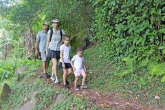 Family hiking the Cross Island Track in the rain forest of a tropical pacific island. Family walking towards the camera hiking the Cross Island Track in the rain stock photo