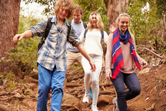 Family hiking through a forest, close up royalty free stock images