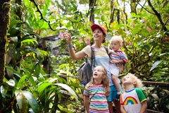 Family hiking in jungle. Mother and kids on a hike in tropical rainforest. Mom and children walk in exotic forest. Travel with child. Borneo jungle and royalty free stock photography