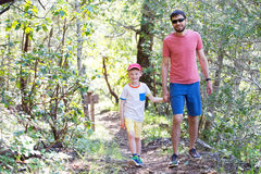 Family hiking in the woods Royalty Free Stock Image