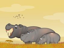 Family of hippos. Illustration of family of hippos in the jungle Stock Image