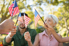 Family holding american flags in the park. On a sunny day Royalty Free Stock Images