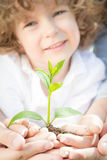 Family holding green young plant Royalty Free Stock Images