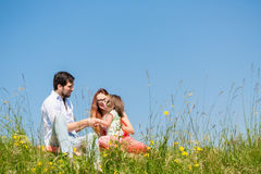 Family holding hands in summer in the grass Royalty Free Stock Photography