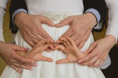 Family holding hands together closeup Royalty Free Stock Image
