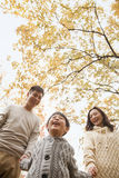 Family holding hands and walking through the park in the autumn, low angle view Stock Images