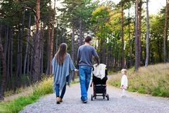 Family holding hands walking together along forrest path with their daughter, father pushing the pram. Happy young family taking a walk in a park, back view royalty free stock photos