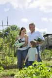 Family Holding Vegetables In Community Garden. Boy with mother and grandfather holding vegetables in community garden royalty free stock images