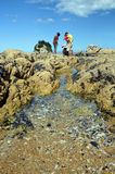Family on Holiday Explores Rock Pools. Royalty Free Stock Image