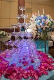 Family holiday, wedding Royalty Free Stock Image