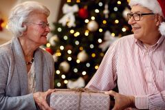 Family, holidays, age and people concept - senior couple with gi. Family, holidays, age and people concept - happy senior couple with gift box Royalty Free Stock Image